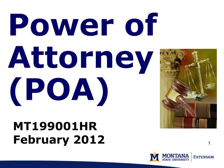 power of attorney poa n.