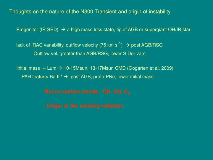 Thoughts on the nature of the N300 Transient and origin of instability