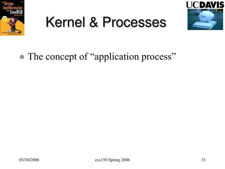Kernel & Processes