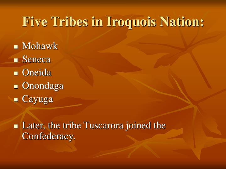 Five Tribes in Iroquois Nation: