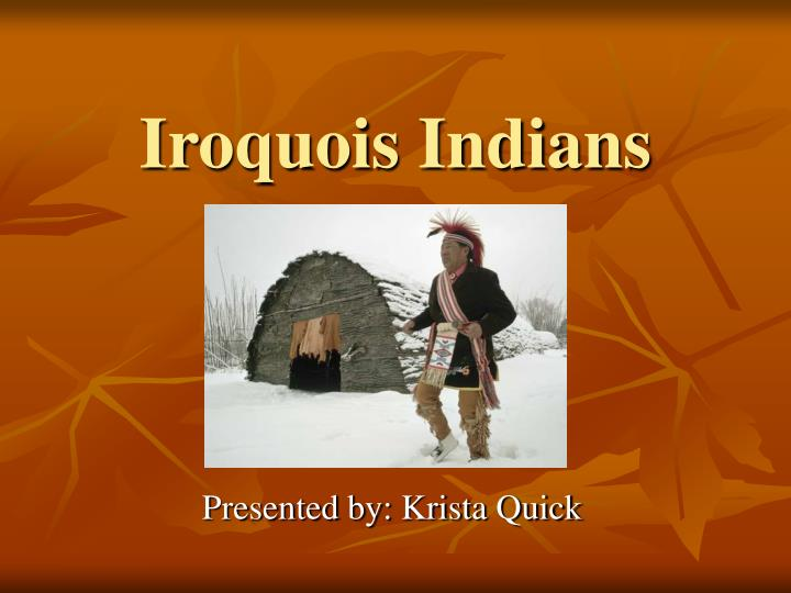 iroquois indians n.