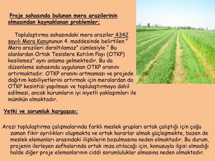 Proje sahasında bulunan mera arazilerinin olmasından kaynaklanan problemler;