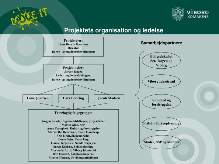 Projektets organisation og ledelse