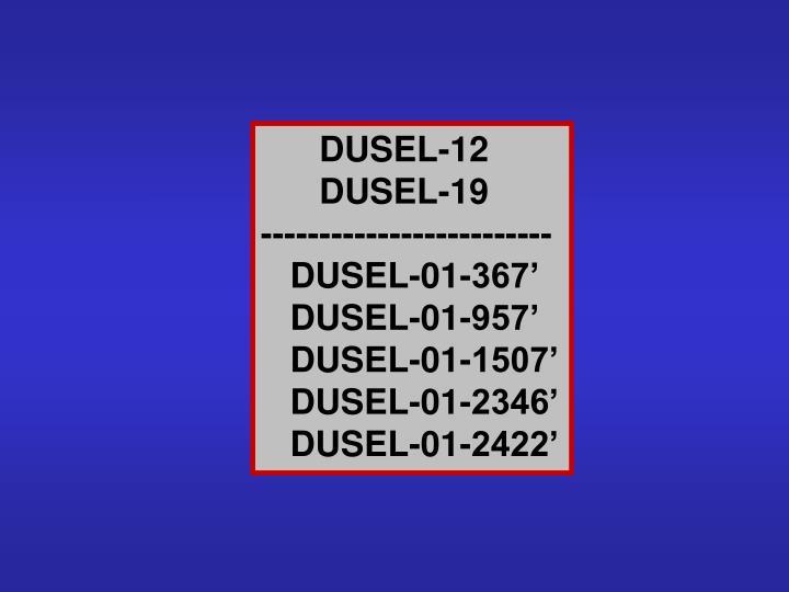 DUSEL-12