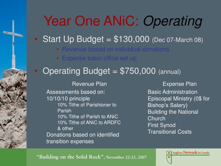 Year One ANiC: