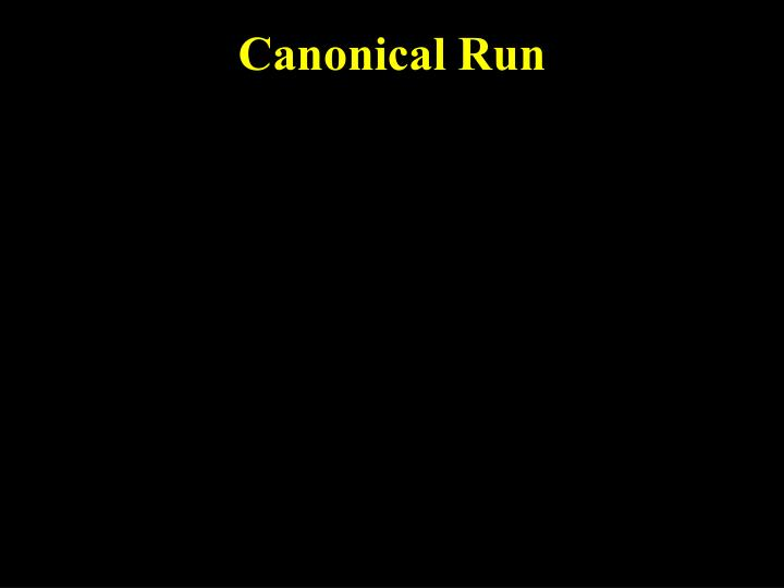 Canonical Run