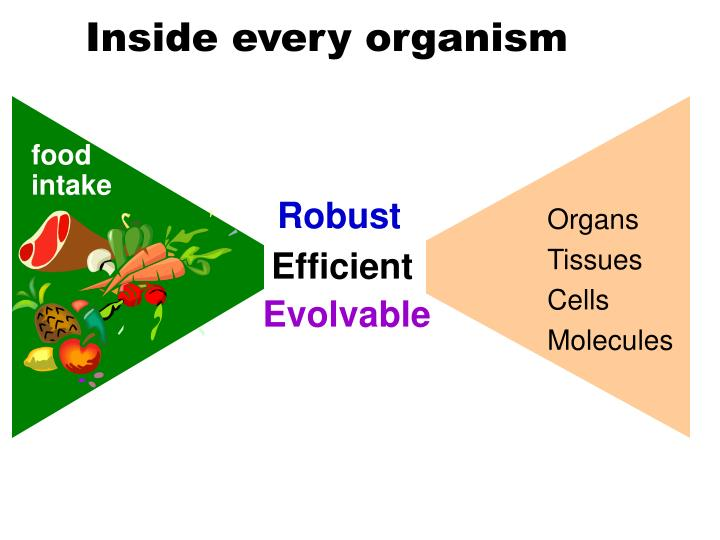 Inside every organism