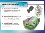 estruturas celulares9
