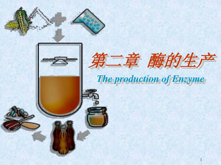 the production of enzyme n.