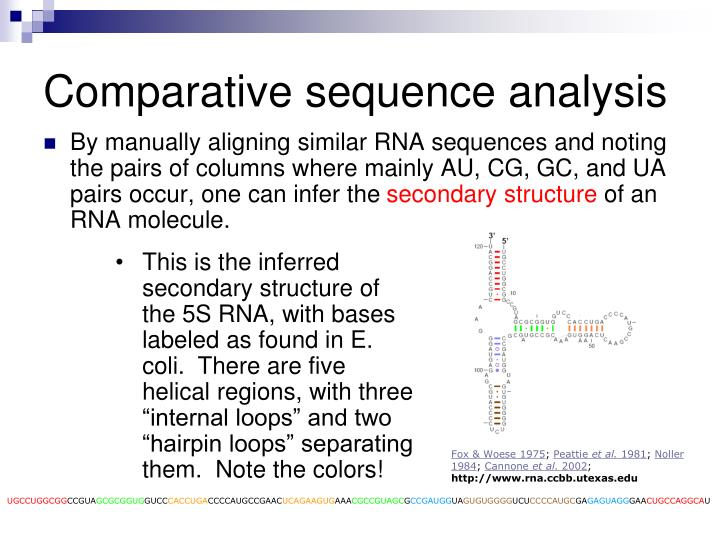 Comparative sequence analysis