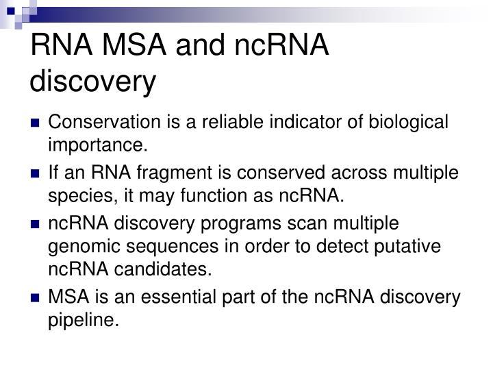 RNA MSA and ncRNA discovery