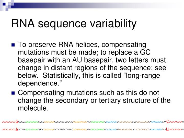 RNA sequence variability