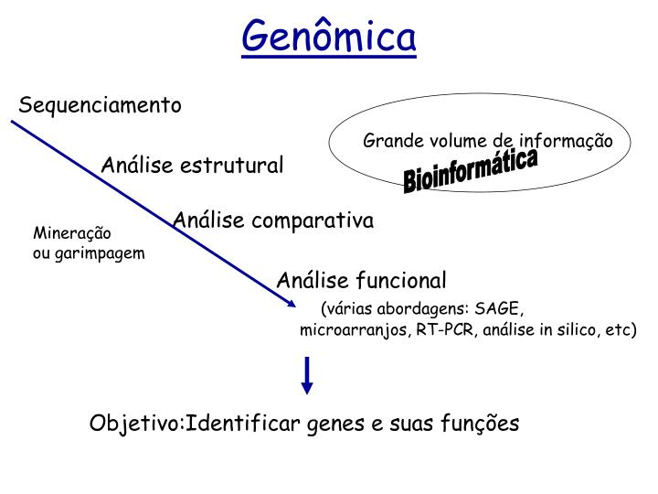 Genômica