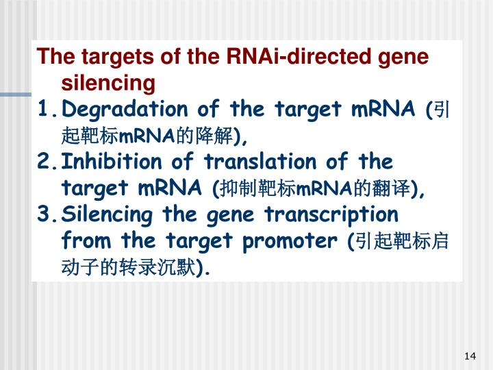 The targets of the RNAi-directed gene silencing
