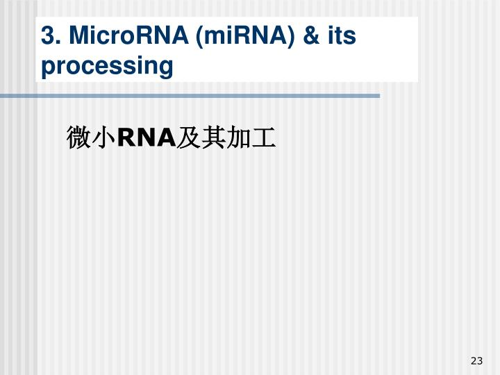 3. MicroRNA (miRNA) & its processing