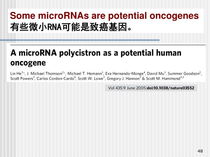 Some microRNAs are potential oncogenes