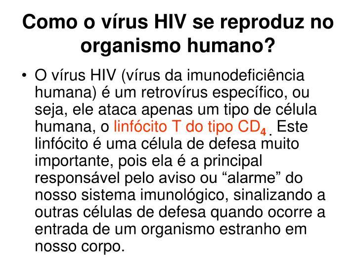 Como o vírus HIV se reproduz no organismo humano?