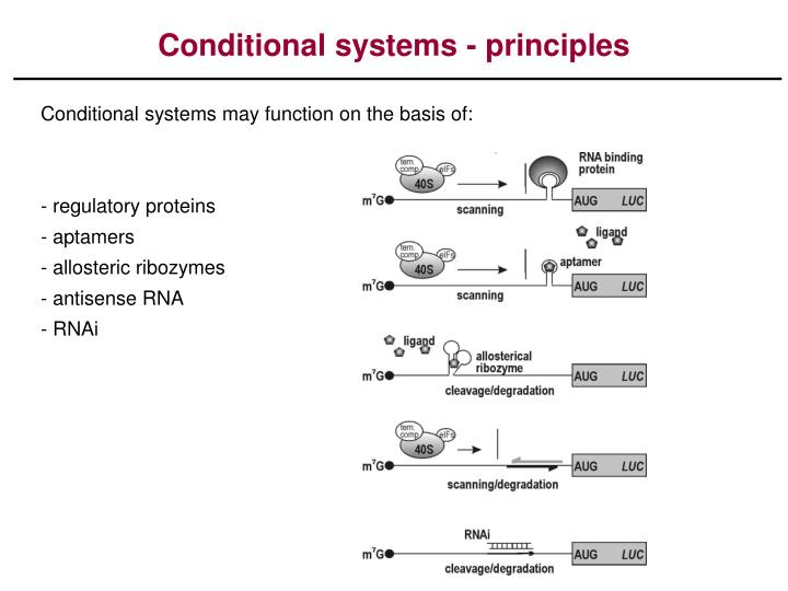 conditional systems principles n.
