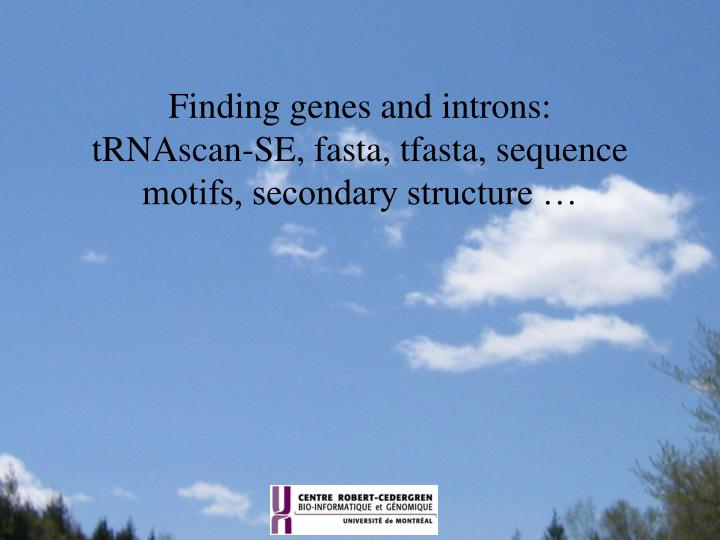 finding genes and introns trnascan se fasta tfasta sequence motifs secondary structure n.
