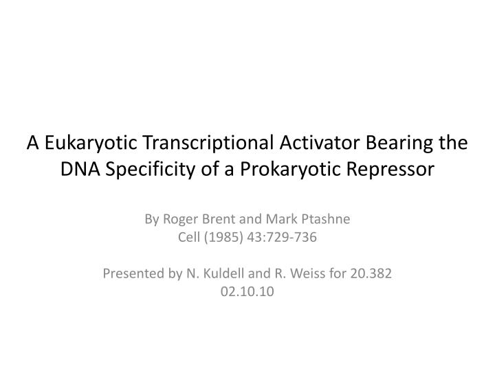a eukaryotic transcriptional activator bearing the dna specificity of a prokaryotic repressor n.