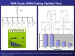 rna foster rna folding stability test