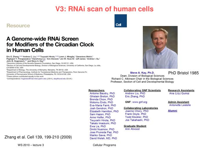 v3 rnai scan of human cells n.