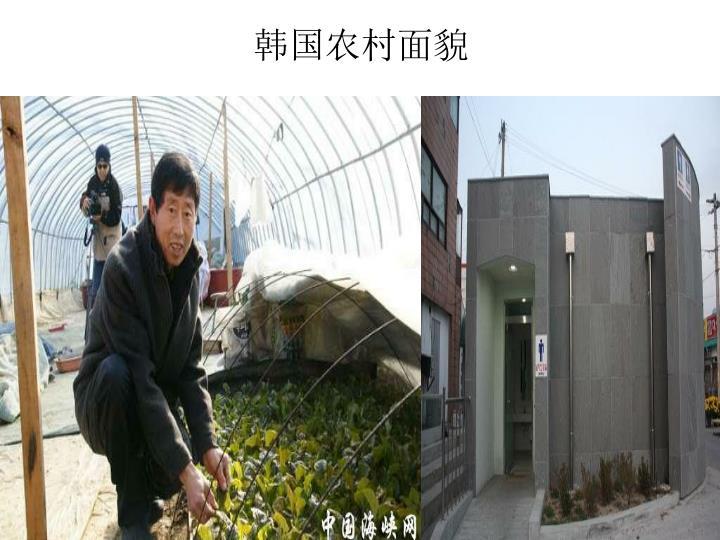 韩国农村面貌