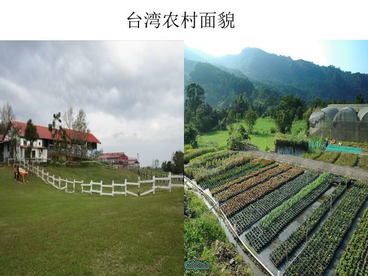 台湾农村面貌
