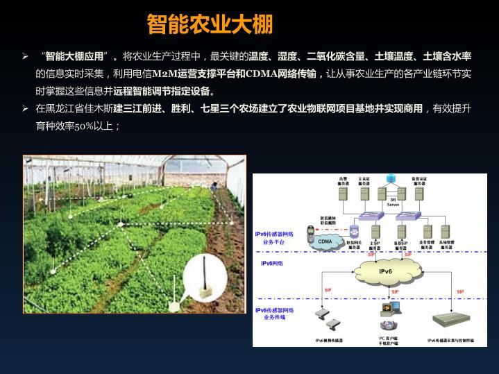智能农业大棚