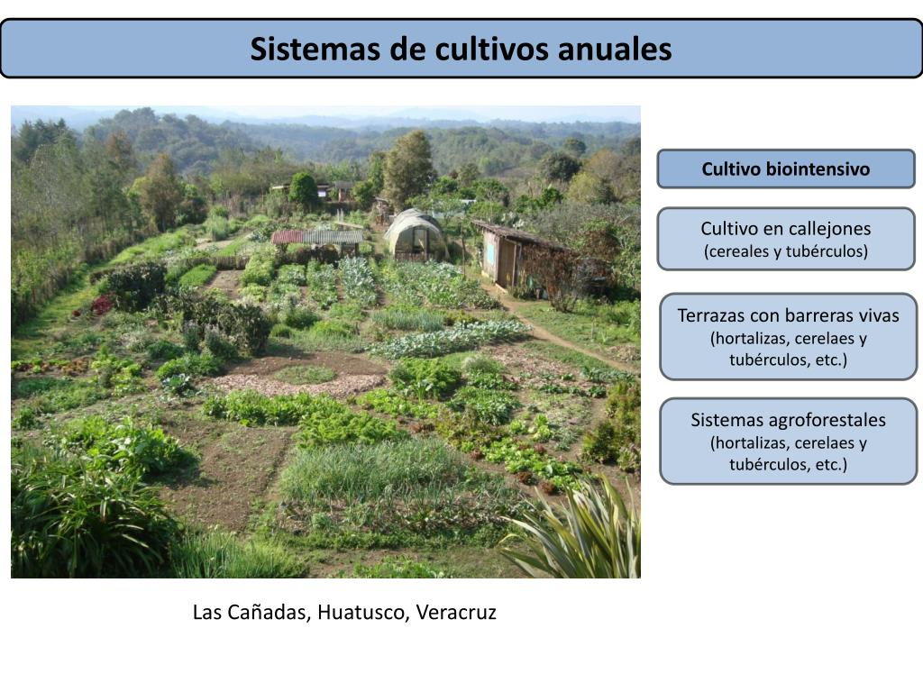 Ppt ú Ltima Actualización Nov 2011 Powerpoint