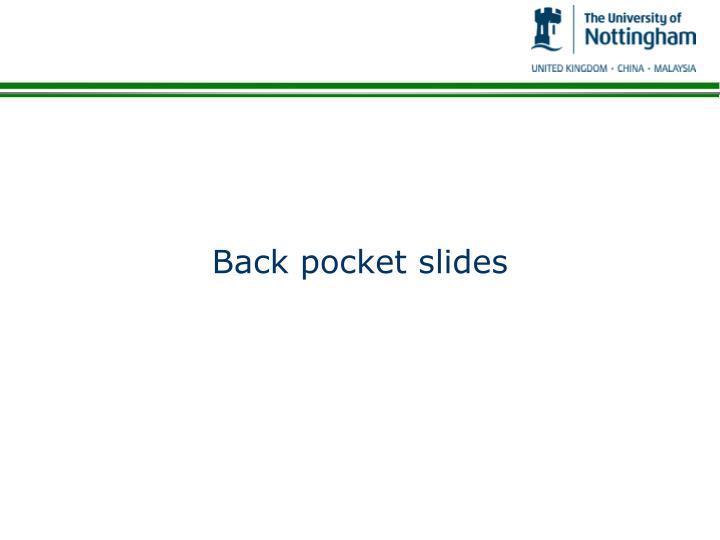 Back pocket slides