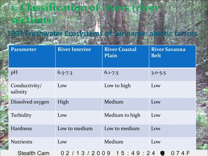 1. Classification of rivers (river sections)