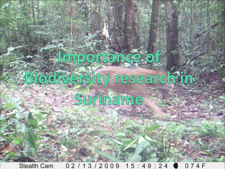 Importance of Biodiversity research in Suriname