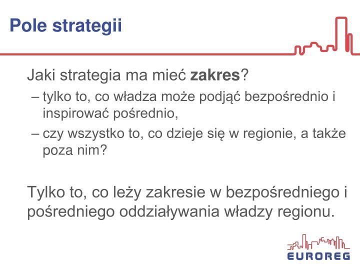 Pole strategii
