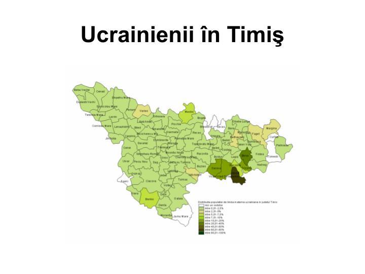 Ucrainienii în Timiş
