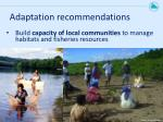 adaptation recommendations1