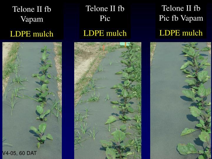 Telone II fb Pic fb Vapam
