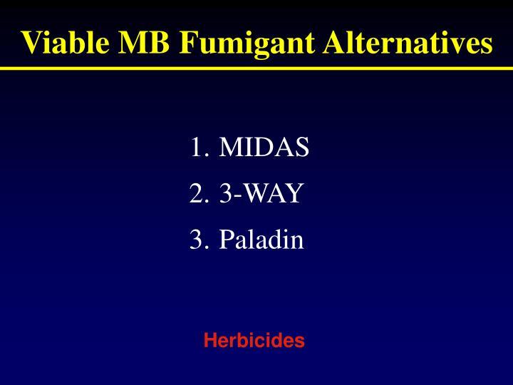 Viable mb fumigant alternatives