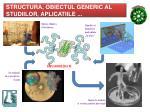 structura obiectul generic al studiilor aplica t iile