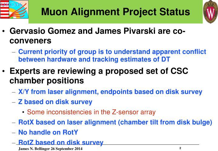 Muon alignment project status