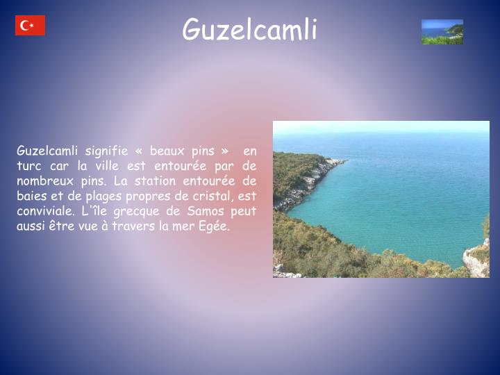 Guzelcamli