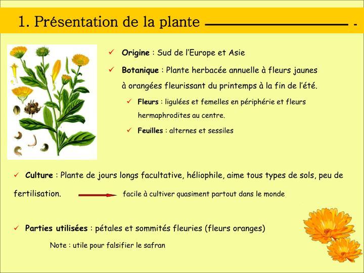 1 pr sentation de la plante