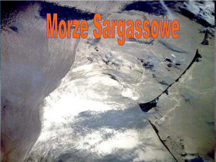 Morze Sargassowe
