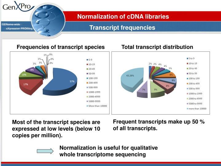 Normalization of cDNA libraries