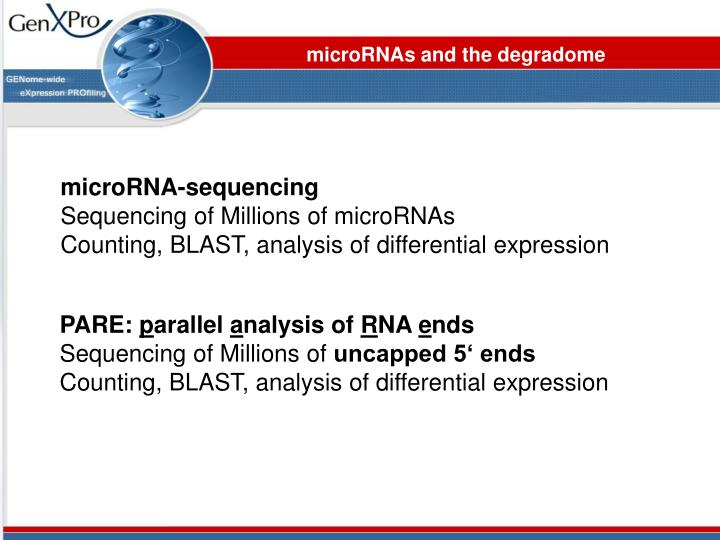 microRNAs and the degradome