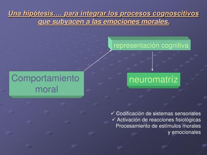 Una hipótesis…. para integrar los procesos cognoscitivos que subyacen a las emociones morales.
