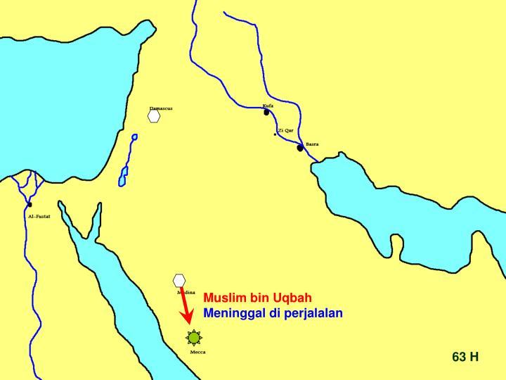 Muslim bin