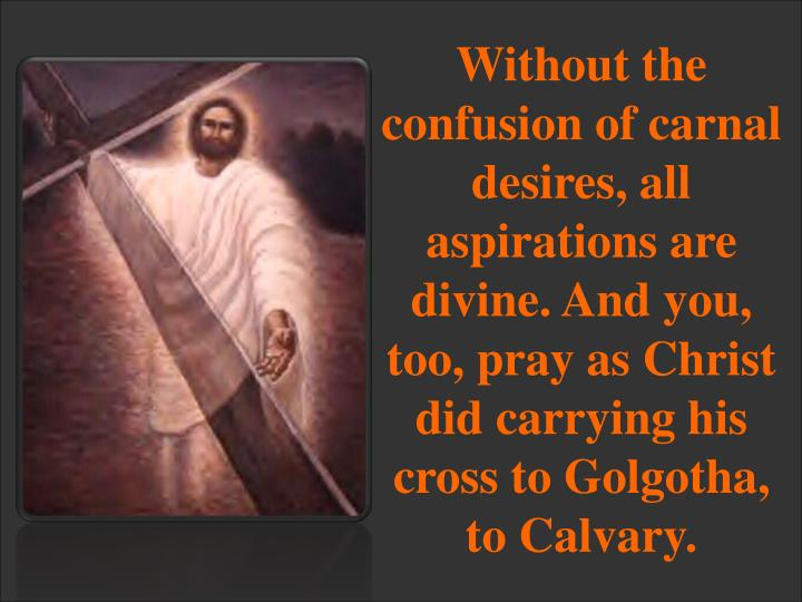 Without the confusion of carnal desires, all aspirations are divine. And you, too, pray as Christ did carrying his cross to Golgotha, to Calvary