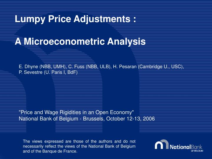 lumpy price adjustments a microeconometric analysis n.