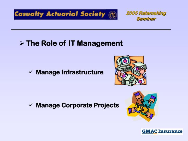 The Role of IT Management